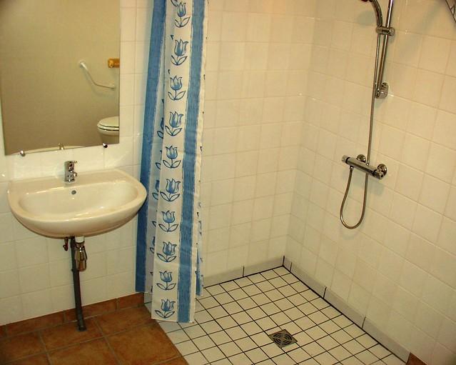 Fraise disabled shower room