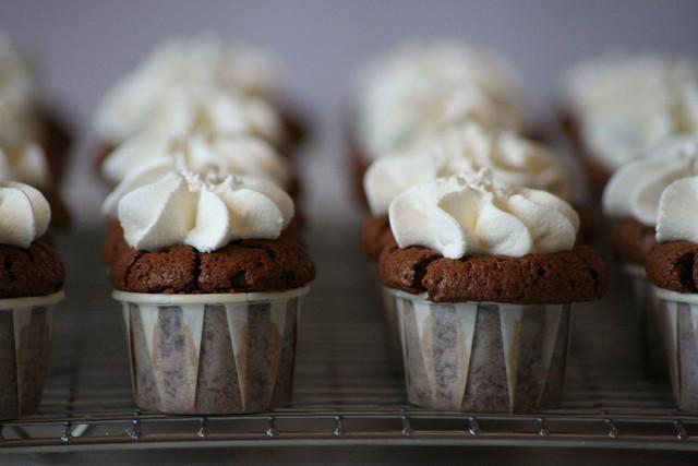 mini chocolate cupcakes with whipped cream