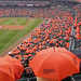 Rain on Umbrella day at Camden Yards by Alan Barr