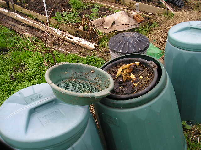 Dalek Collection on the Allotment