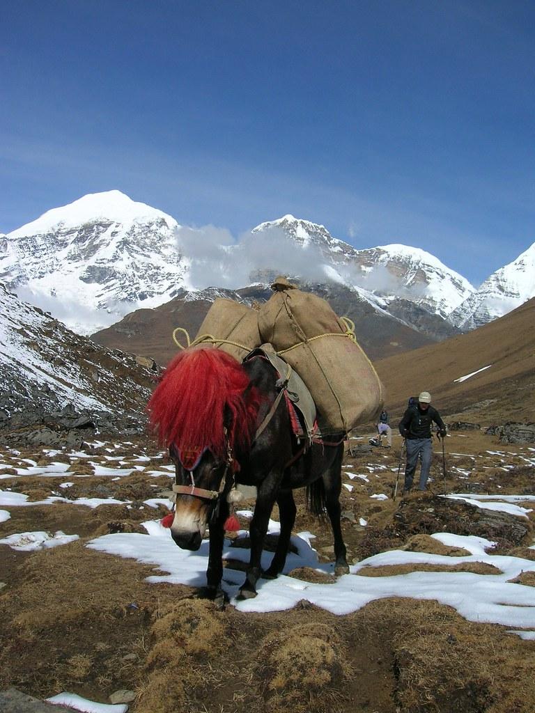 Bhutan Trekking