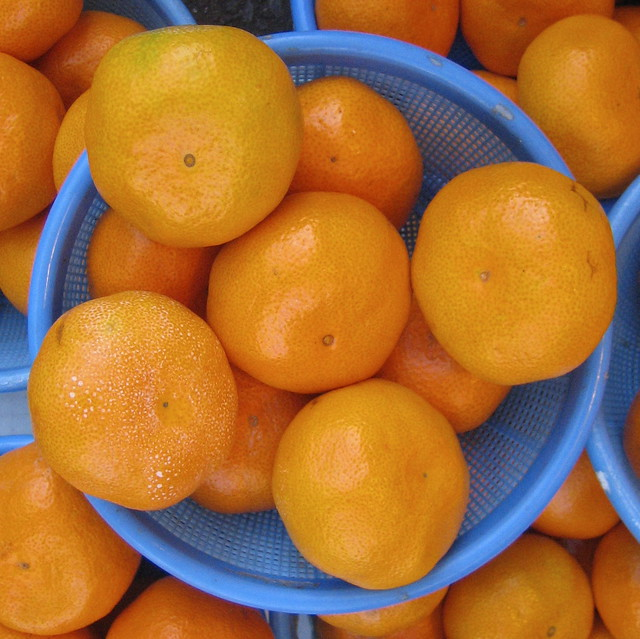 Photo:Oranges By:psd