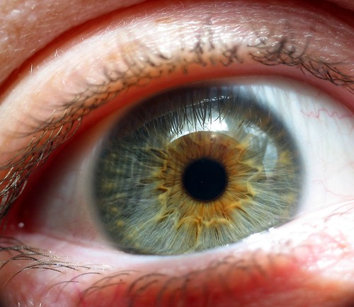 Amazing Close-up Photographs of the Human Eye and How to Make Them Yourself