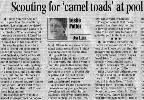 64628961 c97c85819a Camel Toad!