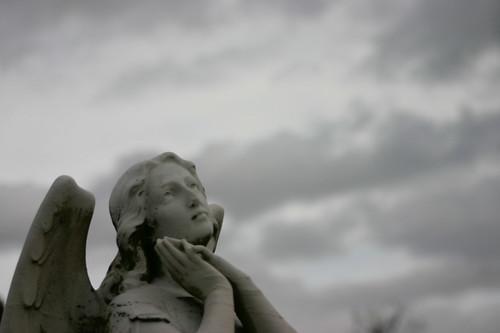 angel wants the sky