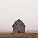 Untitled #2 [Barn, North elevation, North of Aurelia, Cherokee County, Iowa]