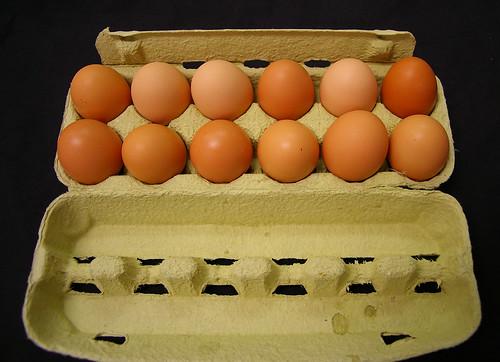 IMGP0612 - dozen eggs