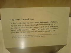 Birth control yam???