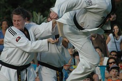 individual sports(1.0), contact sport(1.0), sports(1.0), tang soo do(1.0), combat sport(1.0), martial arts(1.0), karate(1.0), taekkyeon(1.0), japanese martial arts(1.0),