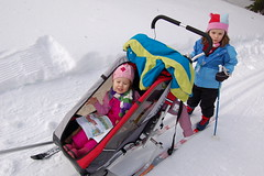 ski equipment, winter, ski, sports, snow, nordic skiing, sled,