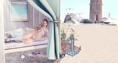 Belleza mesh body review