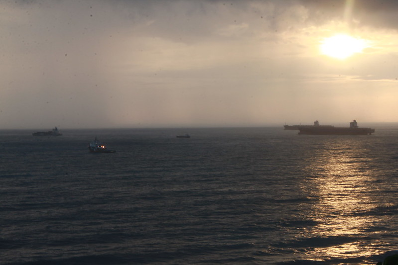 環島-西子灣-夕陽與猴子共舞 (17)