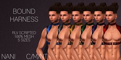 Mens Bound Harness @ ROMP