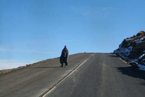 Blanketed roadworker, Lesotho