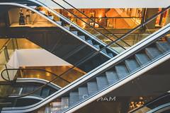 Escalator #187/365