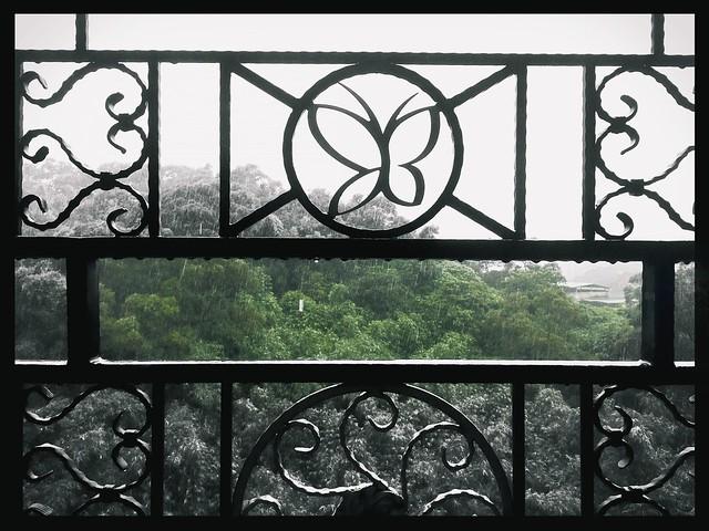 下雨天的觀景窗