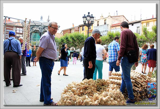 Feria de los ajos en Briviesca (1)