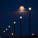 Night Lights by trevager