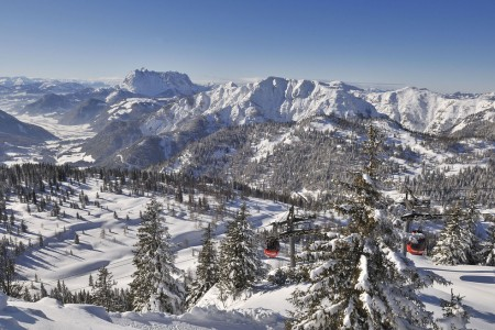 Encyklopedie: Bavorsko - alpský trpaslík