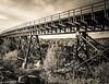 Scrub land Rail Bridge