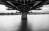 Under the Hawthorne Bridge