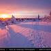 Finland - Lapland - Frozen North of Arctic Circle during amazing sunset by © Lucie Debelkova / www.luciedebelkova.com