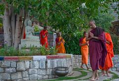 Buddha Prevails #2