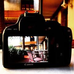 Concurs de fotografia a Instagram Sant Jordi 2015