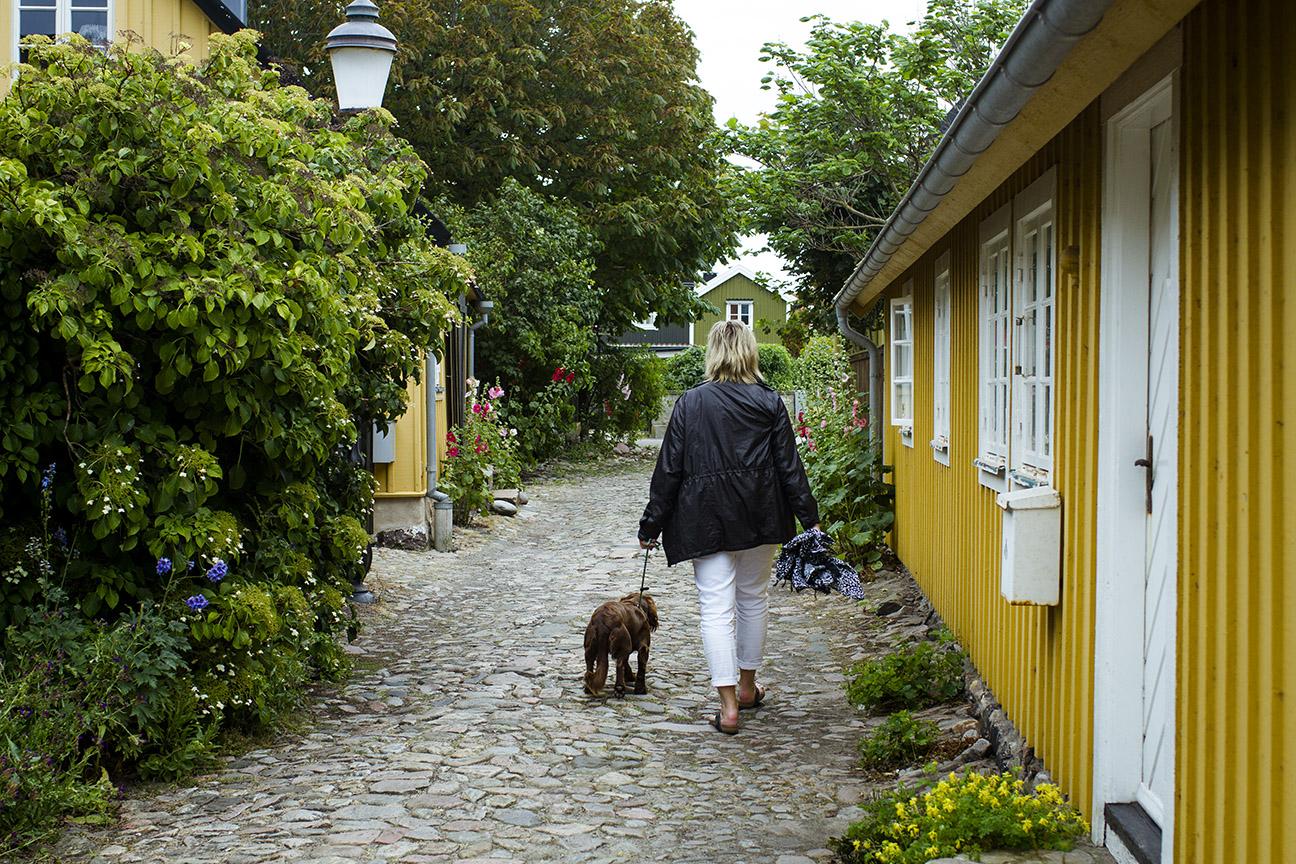 norrvikens trädgårdar torekov