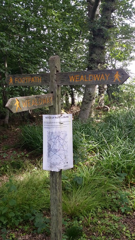 ... But I'm back on the Trail now #Wealdway #sh