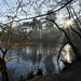 Puttenham Common, Surrey by tonybill