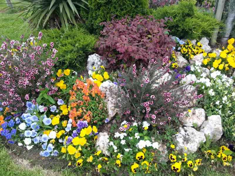 Jardineros en acción - Un buen curso de jardinería