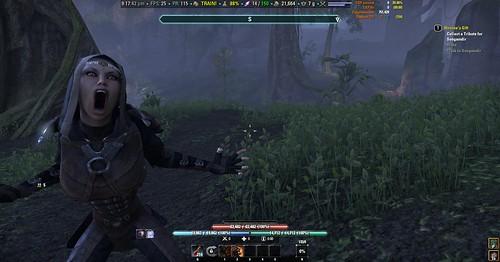 elder scrolls online r slot