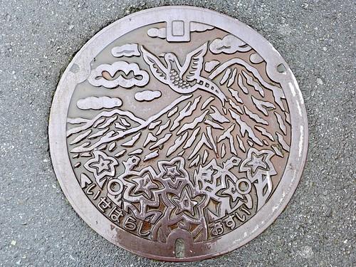 Isehara Kanagawa, manhole cover (神奈川県伊勢原市のマンホール)