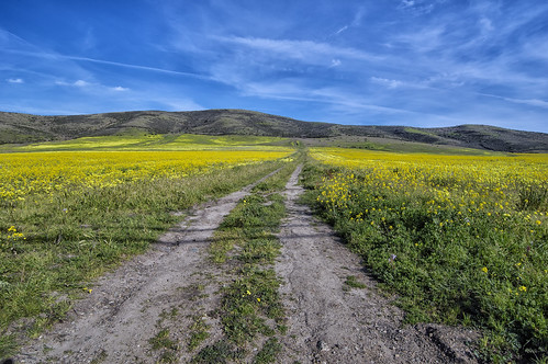 green hills blue road dirt california