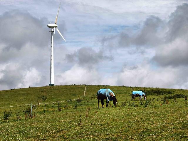Cornish Wind Power 092