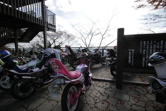 20141130-大平山(秋)-0149.jpg