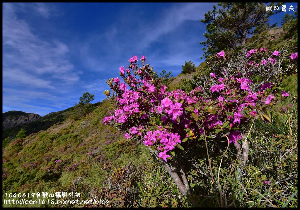 1040619合歡山攝影外拍DSC_1295