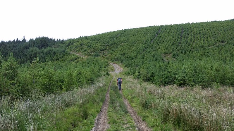 Heading back up through the forest with @LoneWalkerUK #sh