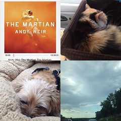 Homeward bound. #Martianparanoia, #fuzzytravelers
