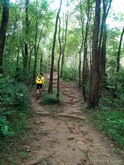 xlrider-the-columbia-trail-2015
