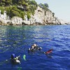 http://www.famoushostels.com/nice-diving/  Scuba diving in Nice, France.  Seeing that part of the world is awesome. Being a fish is amazing!  For photos on diving in Nice, click the link above!  Nice, France.  #travel #instagood #instatravel #traveling #t by bigbeaverdiaries