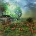 The henhouse by jaci XIII