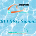 2013 BRG Summit