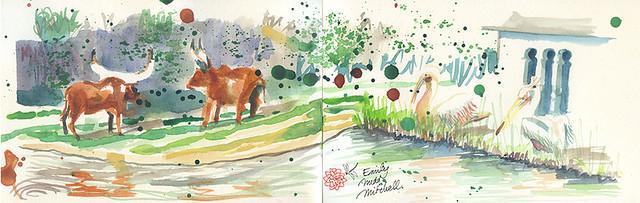 Parc Tete d Or Lyon - Plaine africaine - Emily Nudd-Mitchell