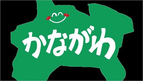 脱毛サロン 医療脱毛 神奈川県