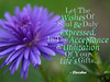211_Your Life's Gifts_AR_199_pg206_600x480_Eleesha_Inspiration_Quote_Affirmation00