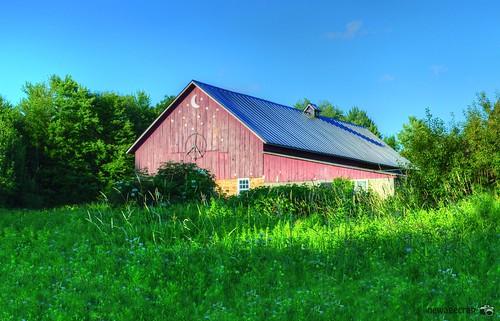 Peace Farm
