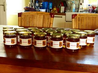 Onze eerste eigen honing