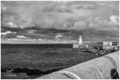 Guernsey (2)